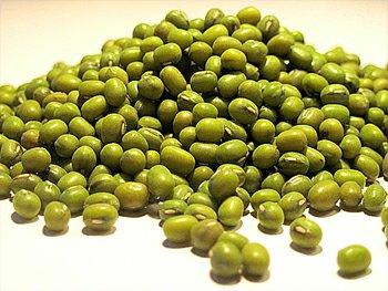 Luštěniny – fazole mungo