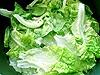 Dietní hlávkový salát